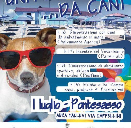 giornata_cani